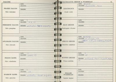 Birder Diary 3